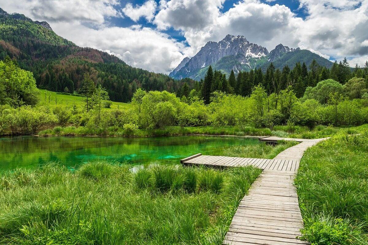 Zelenci, Triglavský národný park