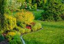 Rekonštrukcia záhrady